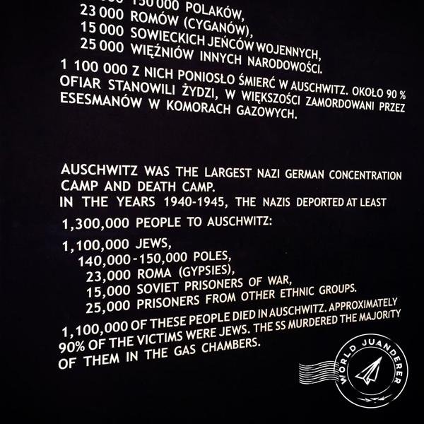 Auschwitz 8