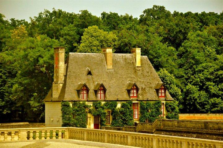 2011-loire-valley-cheverny-castle-8