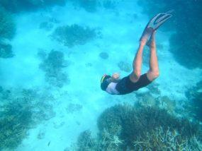 Coral Reef 19
