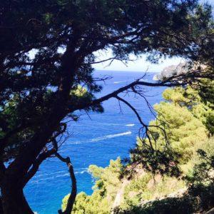 La Fontellina in Capri
