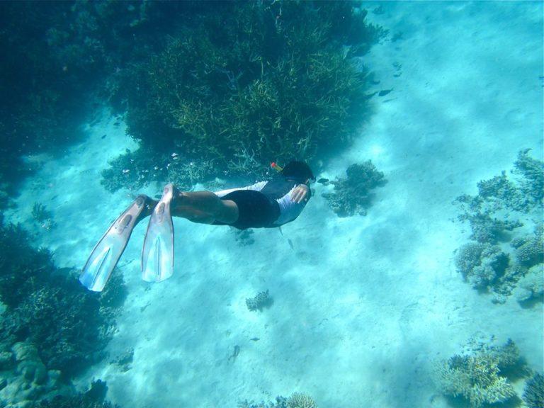coral-reef-18