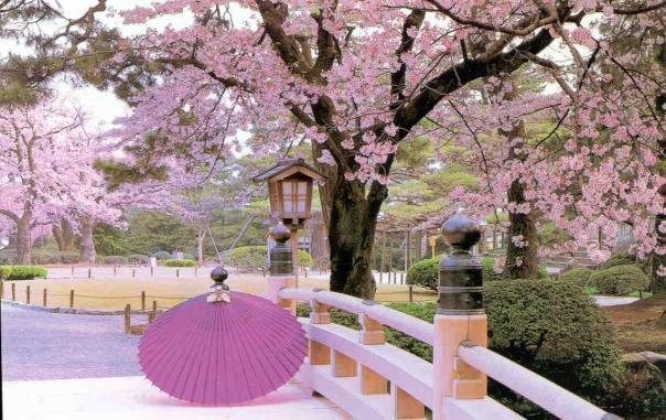 japan-scenery-beauty-1